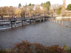 井之頭公園