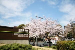 武道館 北の丸公園