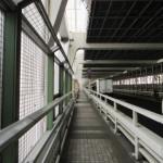 東京駅からレインボーブリッジ遊歩道へのアクセス。おすすめの行き方は?