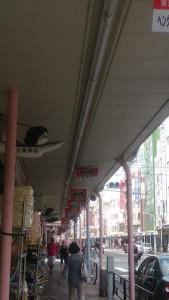 合羽橋商店街のぼり