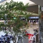 新宿駅から成田空港へのアクセス。おすすめの行きかたを紹介します。