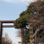 品川駅から靖国神社へのアクセス。確実に行ける方法を紹介します。